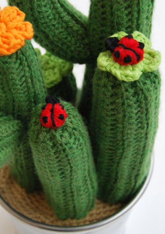 Decorando un lindo cactus, visto en Artesanio